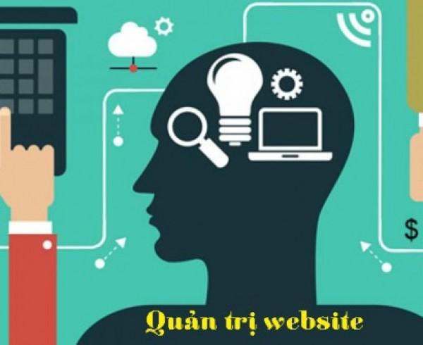 dichvuquantriweb-cong-viec-co-ban-hang-ngay-cua-mot-nhan-vien-quan-tri-website-can-phai-thuc-hien-va-cach-thuc-hien