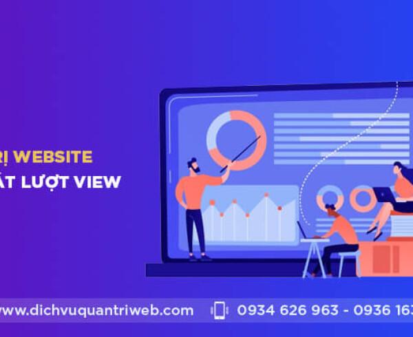 dichvuquantriweb-quan-tri-website-va-kiem-soat-luot-view-01